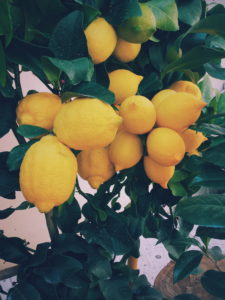 Thinking out loud – Residency and lemons